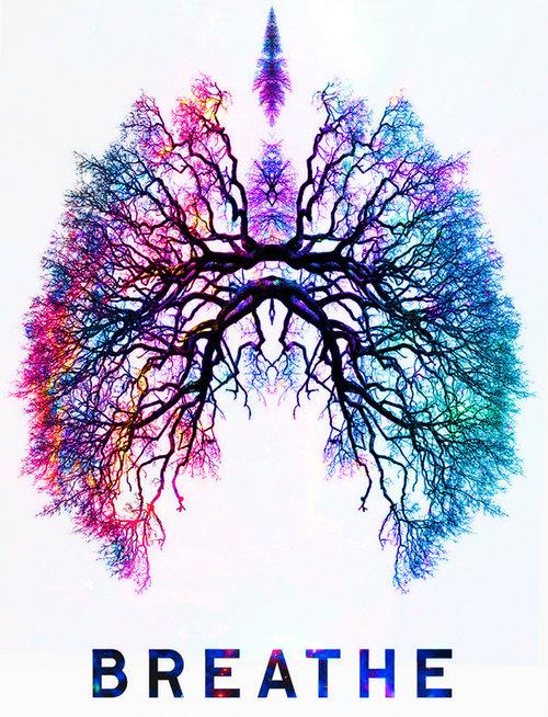 Respiración nasal, 5 razones.